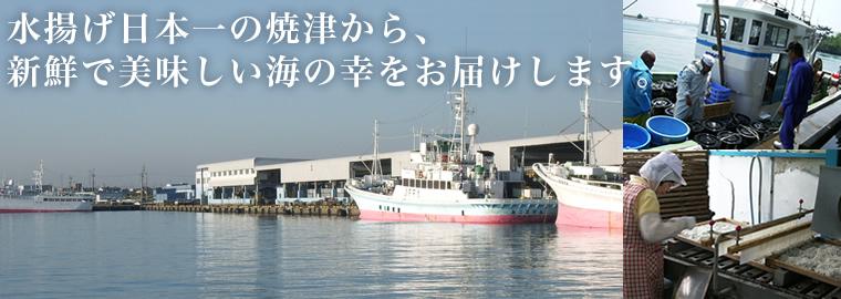 水揚げ日本一の焼津からお届けします